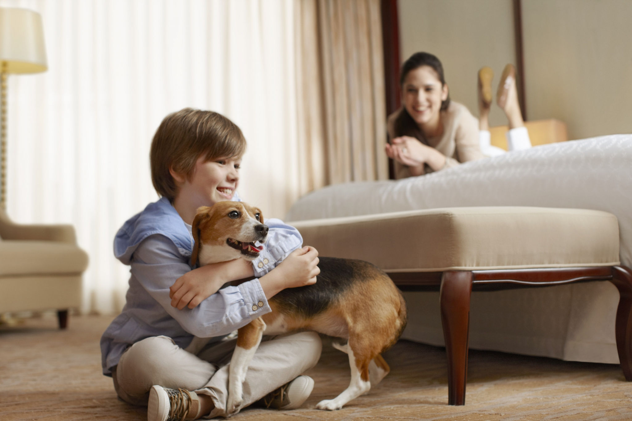 Dog Friendly Hotel | Sheraton Suites Key West
